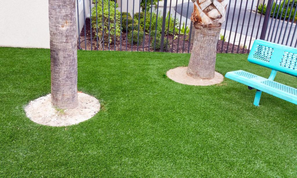 Palm-Beach-Turf-turf-fake-grass-installation-Landscape_5