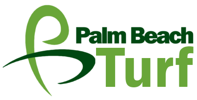 Palm Beach Turf